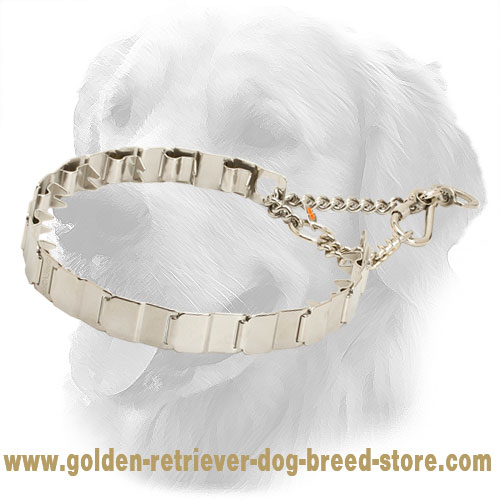 HS Golden Retriever Pinch Collar of High Quality