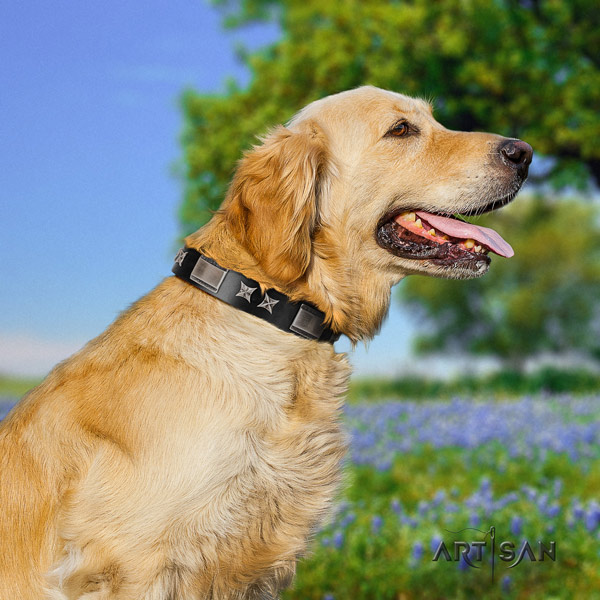 Golden Retriever walking genuine leather collar for your impressive dog