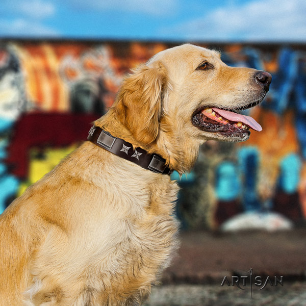 Golden Retriever easy wearing full grain leather collar for your handsome four-legged friend