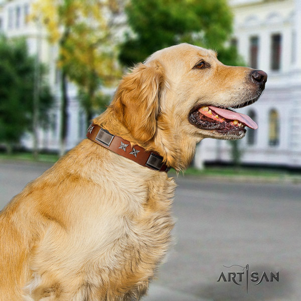 Golden Retriever walking full grain leather collar for your attractive dog