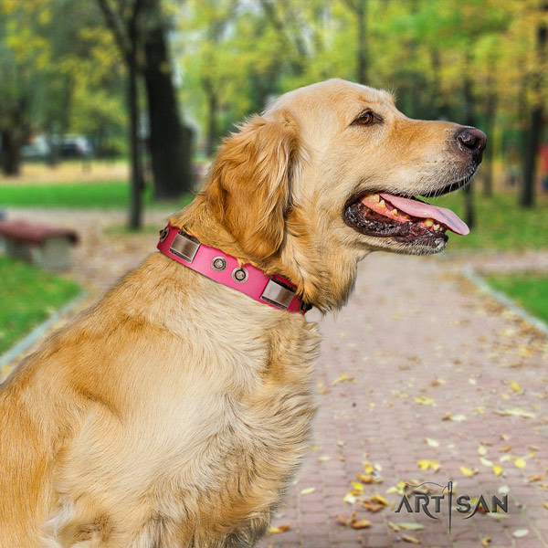 Golden Retriever daily use natural leather collar for your lovely four-legged friend