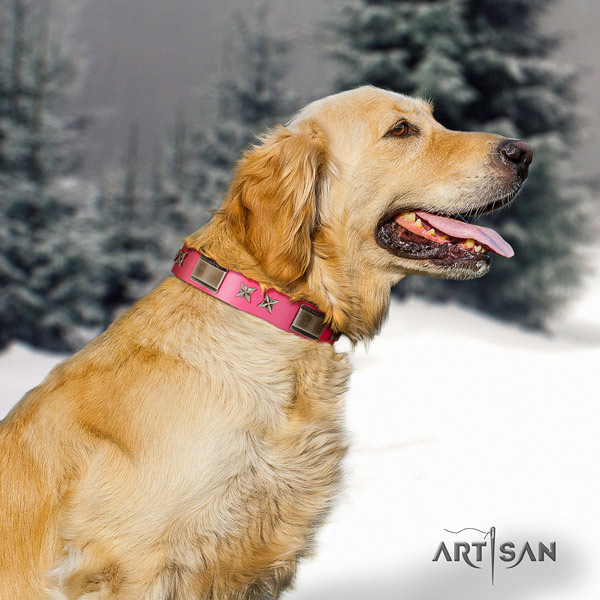 Golden Retriever everyday use full grain natural leather collar for your lovely canine