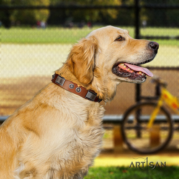 Golden Retriever everyday walking natural leather collar for your lovely doggie