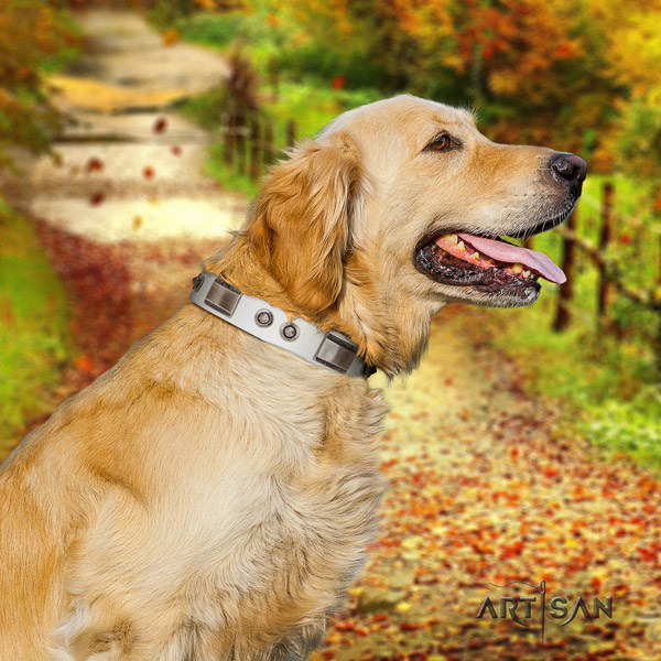Golden Retriever daily walking full grain genuine leather collar for your attractive pet