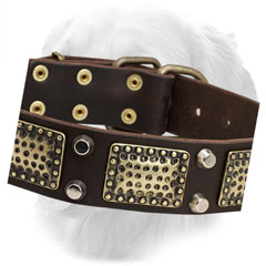 Nickel Studs and Brass Plates on Leather Golden Retriever Collar