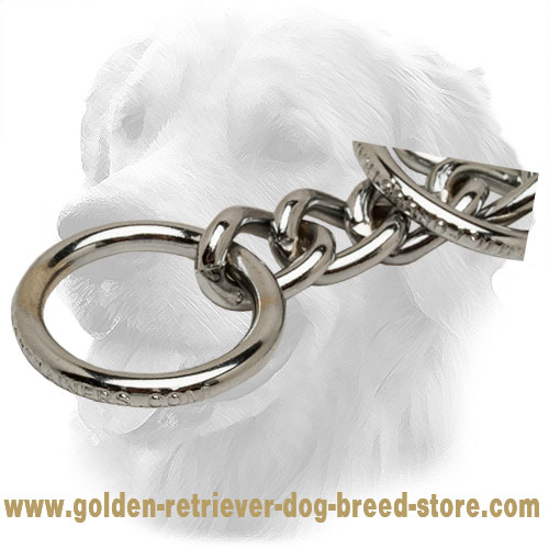 Strong O-Ring on Durable Chrome Plated Golden Retriever Choke Collar