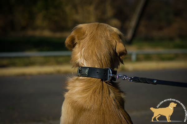 Leather Golden Retriever Collar with Rust-proof Buckle and D-ring