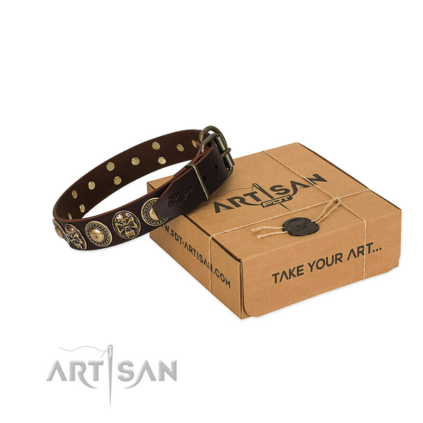 Rust-proof adornments on dog collar for everyday use