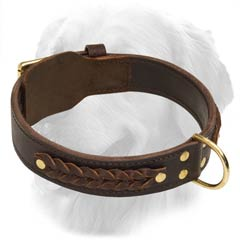 Golden Retriever Collar With Brass Hardware