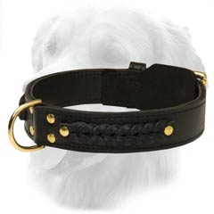 Golden Retriever Leather Collar With Braids And Studs