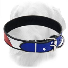 Golden Retriever Leather Collar with American Flag  Drawing