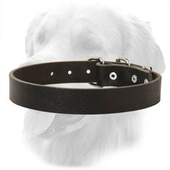 Ergonomic Design Durable Leather Collar