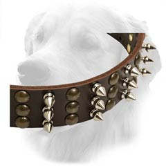 Golden Retriever Spiked And Studded Collar