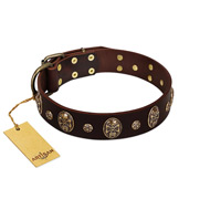 """Breaking the Horizon"" FDT Artisan Brown Leather Golden Retriever Collar with Engraved Studs and Medallions"