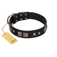 """Foregone Riches"" FDT Artisan Black Leather Golden Retriever Collar with Old Silver-like Square Studs and Pyramids"