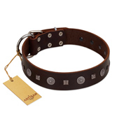 """Pure Sensation"" Exclusive FDT Artisan Brown Leather Golden Retriever Collar with Fancy Brooches and Studs"
