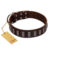 """Brown Lace"" Handmade FDT Artisan Brown Leather Golden Retriever Collar for Everyday Walks"
