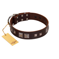 """Object of Virtu"" FDT Artisan Brown Leather Golden Retriever Collar with Old Silver-like Square Studs and Pyramids"