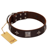 """Cold Star"" Designer FDT Artisan Brown Leather Golden Retriever Collar with Silver-Like Adornments"