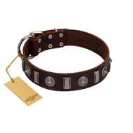 """Spiky Way"" FDT Artisan Brown Leather Golden Retriever Collar with Silver-Like Decorations"