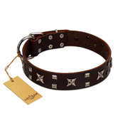 """Bigwig Woof"" FDT Artisan Brown Leather Golden Retriever Collar with Chrome Plated Stars and Square Studs"