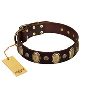 """Bronze Idol"" FDT Artisan Brown Leather Golden Retriever Collar with Eye-catchy Ovals and Small Studs"