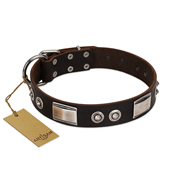 """Baller Status"" FDT Artisan Brown Leather Golden Retriever Collar Adorned with a Set of Chrome Plated Studs and Plates"