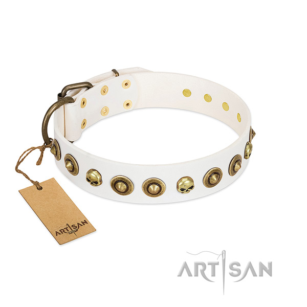 Full grain natural leather collar with fashionable decorations for your doggie