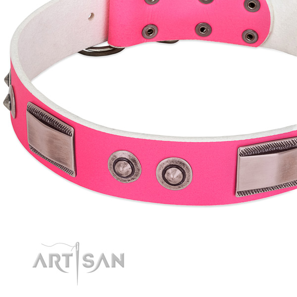 Handmade leather collar with studs for your dog