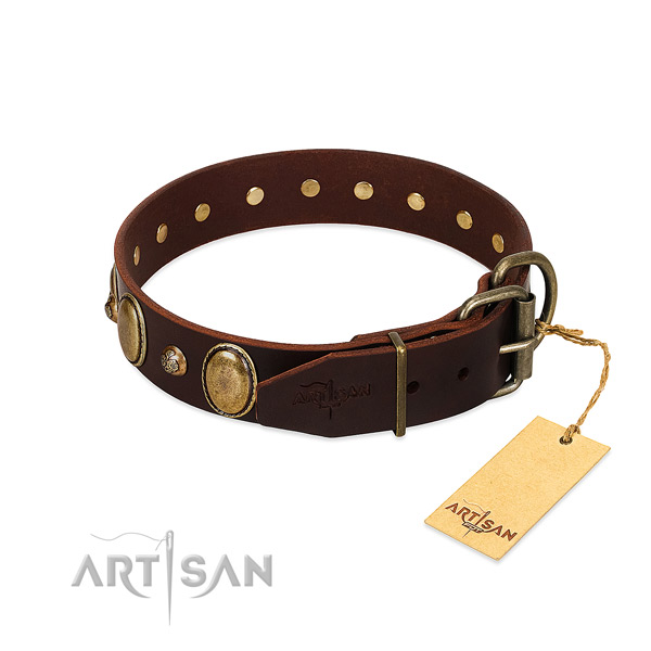 Corrosion resistant traditional buckle on natural genuine leather collar for everyday walking your canine