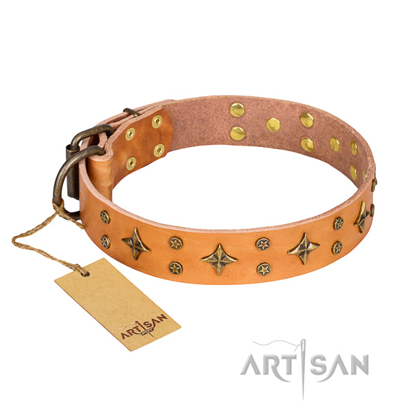 Basic training dog collar of quality genuine leather with studs
