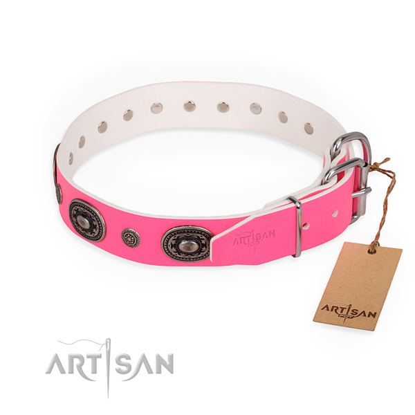 Walking adorned dog collar with durable traditional buckle