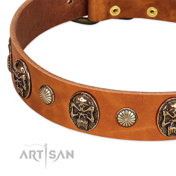 Rust resistant buckle on leather dog collar for your pet