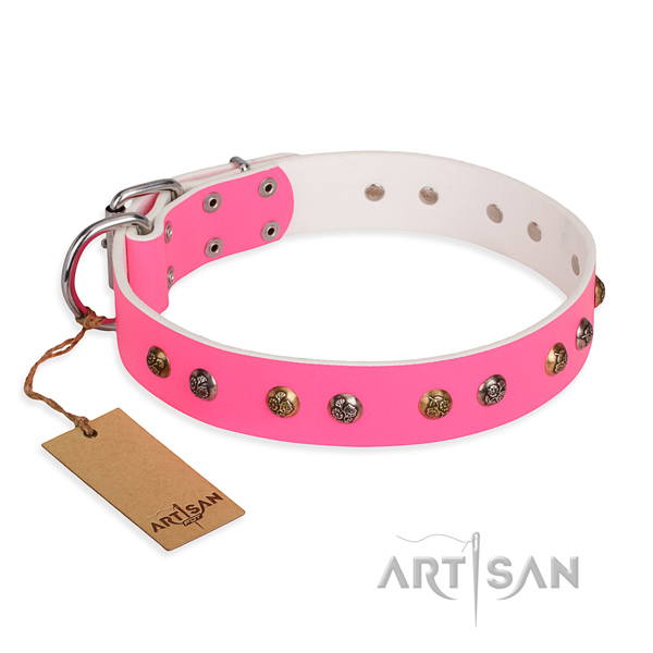 Walking exquisite dog collar with corrosion resistant hardware