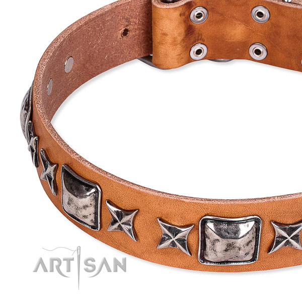 Easy wearing studded dog collar of fine quality full grain leather