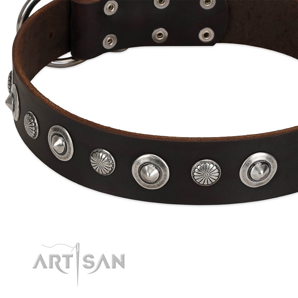 Fashionable decorated dog collar of reliable full grain leather