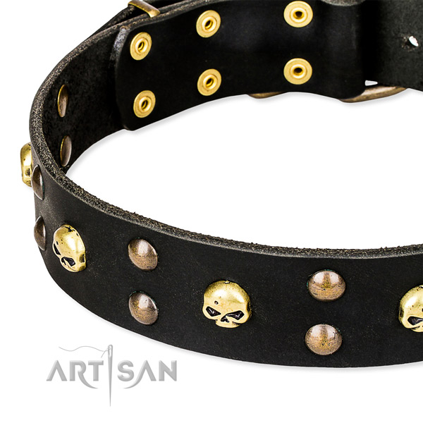 Walking decorated dog collar of quality genuine leather
