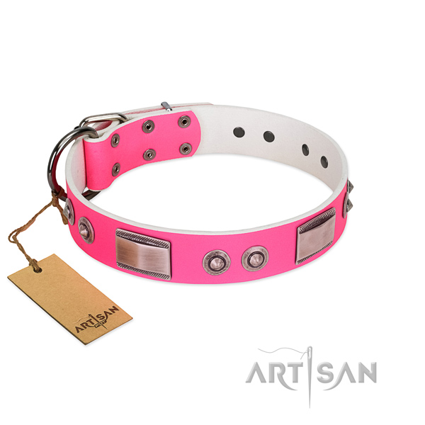 Exquisite dog collar of genuine leather with embellishments