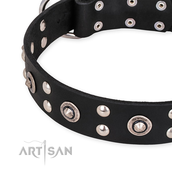 Natural leather collar with rust-proof buckle for your impressive four-legged friend