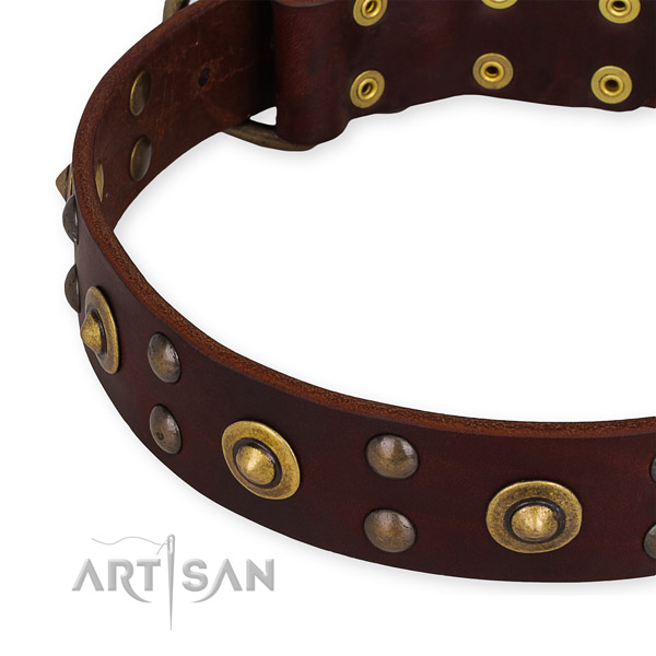 Full grain genuine leather collar with rust resistant traditional buckle for your impressive pet