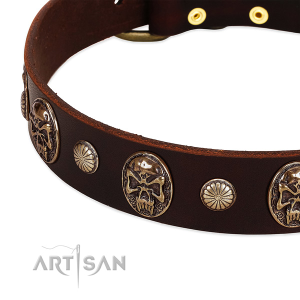 Full grain genuine leather dog collar with adornments for daily walking