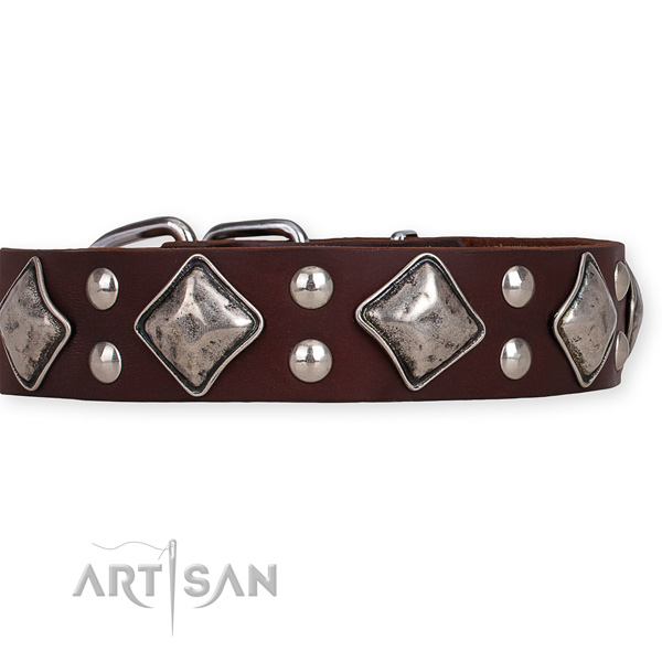Full grain genuine leather dog collar with remarkable corrosion resistant embellishments