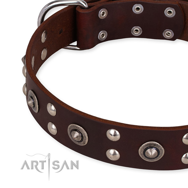 Genuine leather collar with corrosion proof D-ring for your lovely doggie