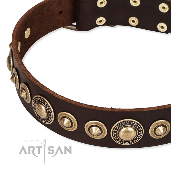 Gentle to touch genuine leather dog collar created for your beautiful four-legged friend