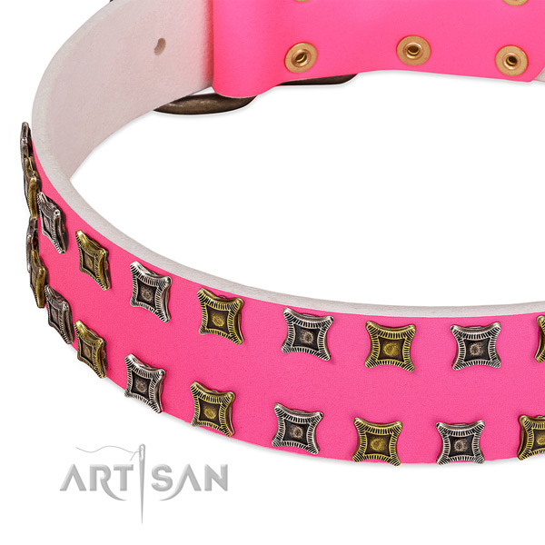 Full grain natural leather dog collar with amazing decorations