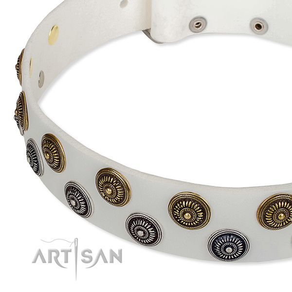 Handy use decorated dog collar of durable full grain leather