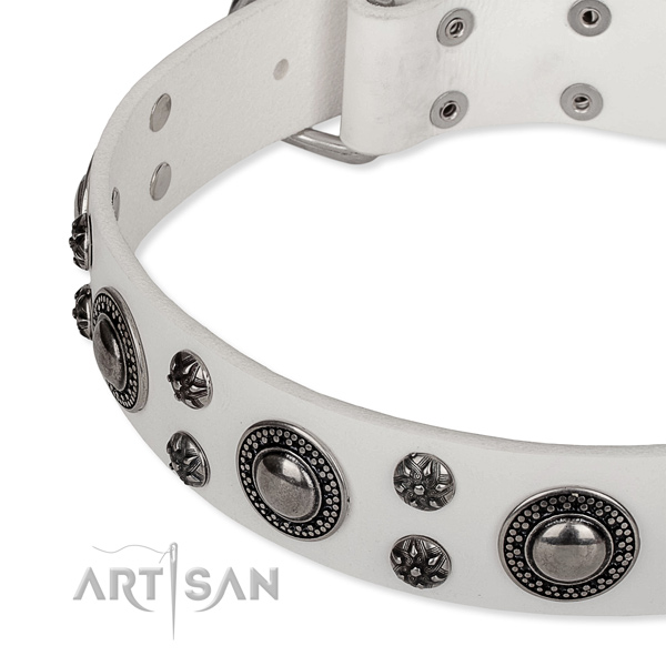 Comfortable wearing adorned dog collar of fine quality full grain leather