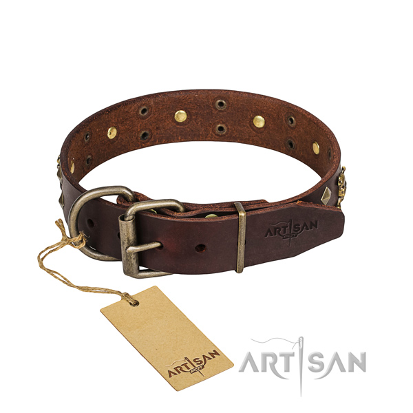 Stylish walking dog collar of strong full grain natural leather with adornments