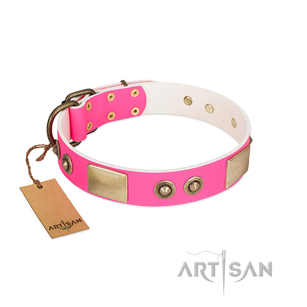 Rust-proof studs on genuine leather dog collar for your canine