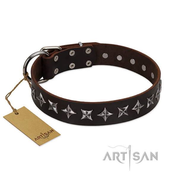 Handy use dog collar of best quality genuine leather with adornments